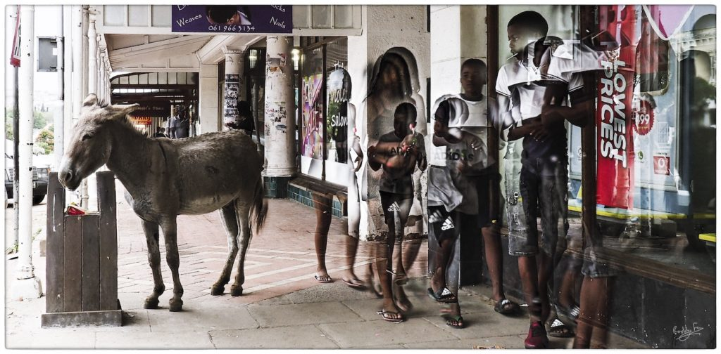 Street scene with donkey, Church Square